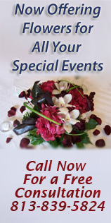Tampa Wedding Florist